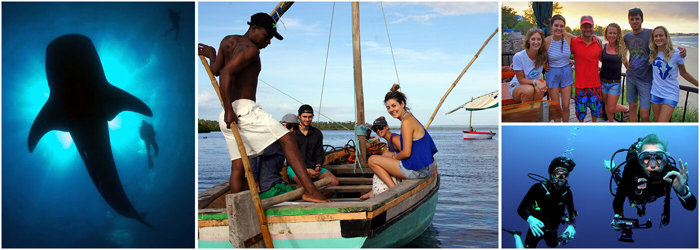 Mozambican Marine Conservation Project