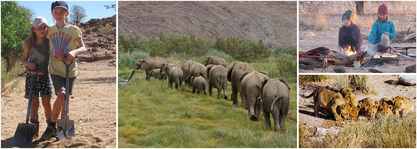 Desert Elephants in Namibia – Family Programme