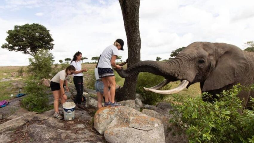 A Famous Face Pays A Visit To The Rhino & Elephant Conservation Project!