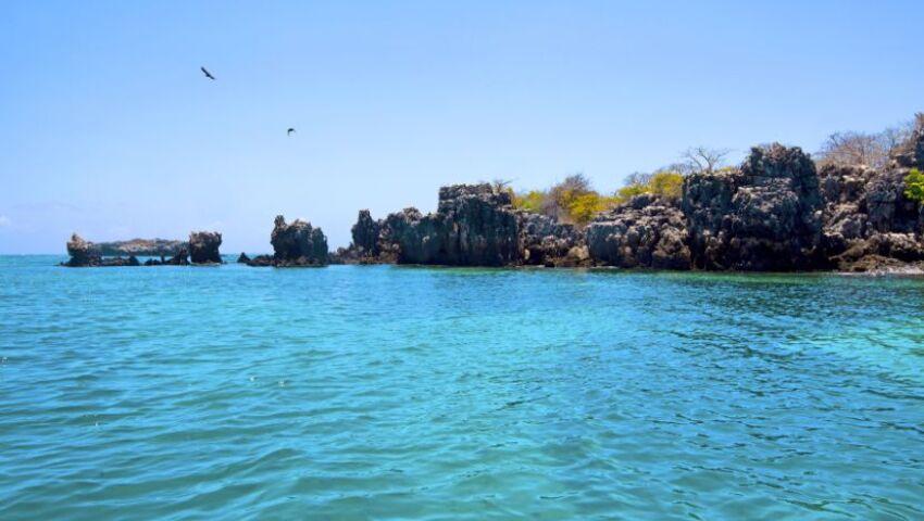 Why Should You Visit Mafia Island?