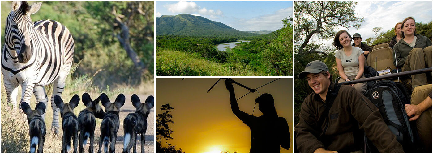 Zululand Wildlife Conservation Project