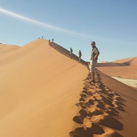 6 Day Dunes and Wildlife Experience