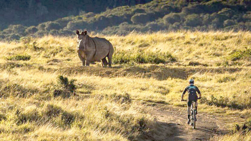 Jamie Rides For Rhinos at the Kariega Game Reserve!