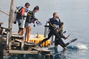 Dive Training Programme