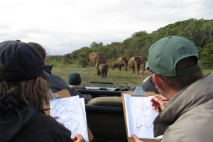 Elephant Impact Monitoring