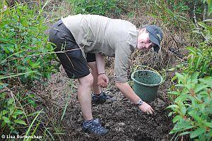 Farming and Planting