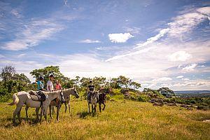 Horseback Herd Monitoring