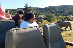 Rhino Monitoring