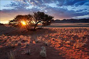 Sun Downers / Sunrise Breakfast
