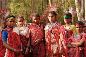 The Baiga Tribe