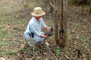 Tiger Conservation & Camera Trapping