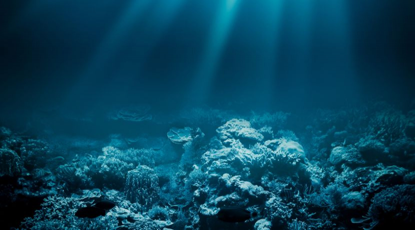 World  Oceans Day 2017 - The Story Behind The Spectacular Universe That Resides Beneath The Waves