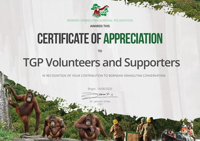 The Great Projects Certificate of Appreciation