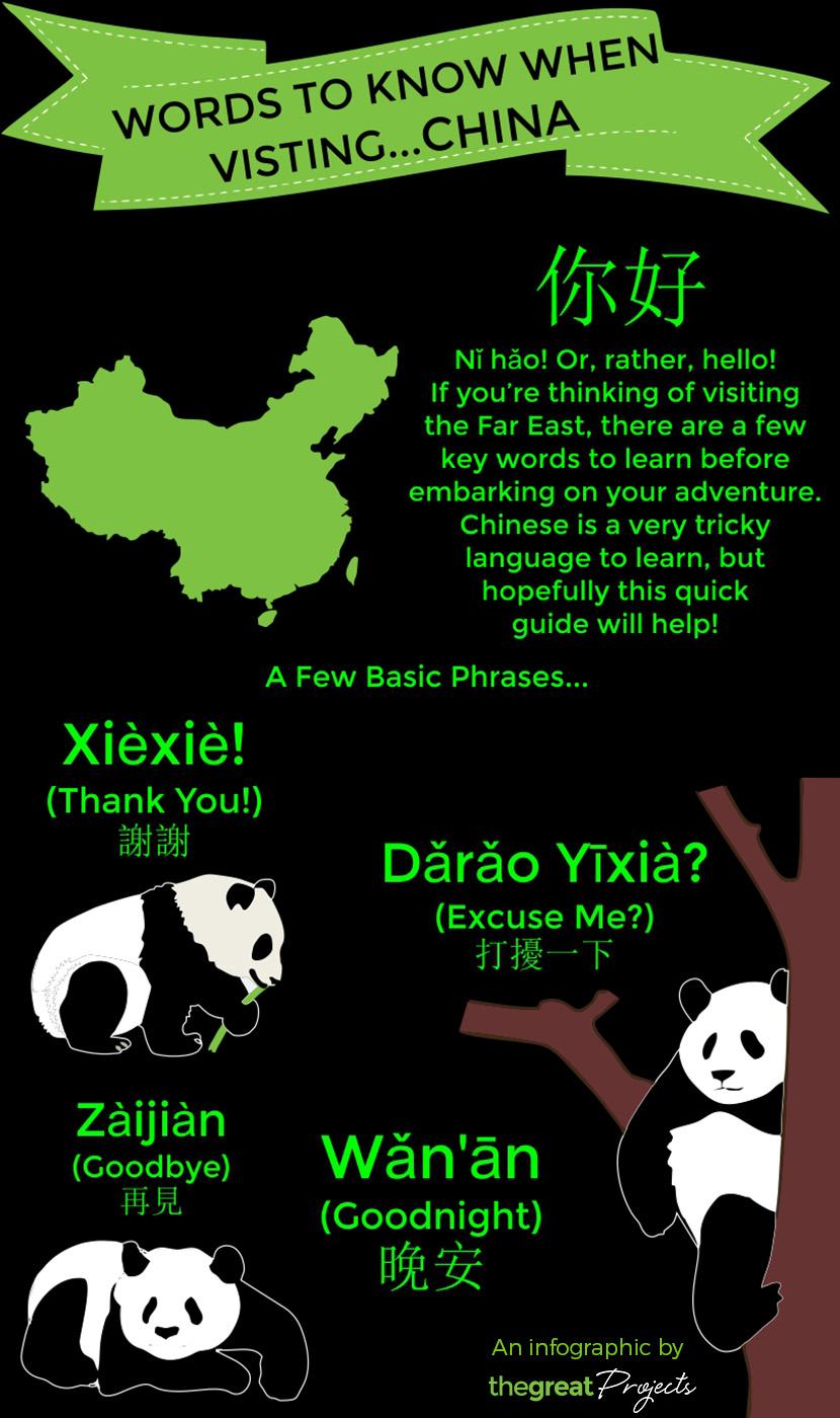 Chinese Language Infographic