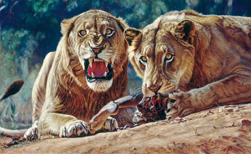 John Banovich - Conservation Artist