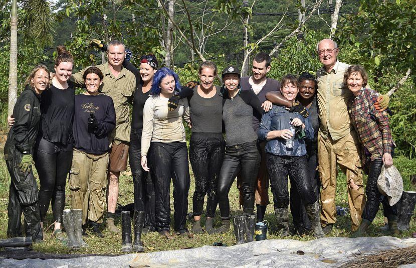 Rainforest volunteers