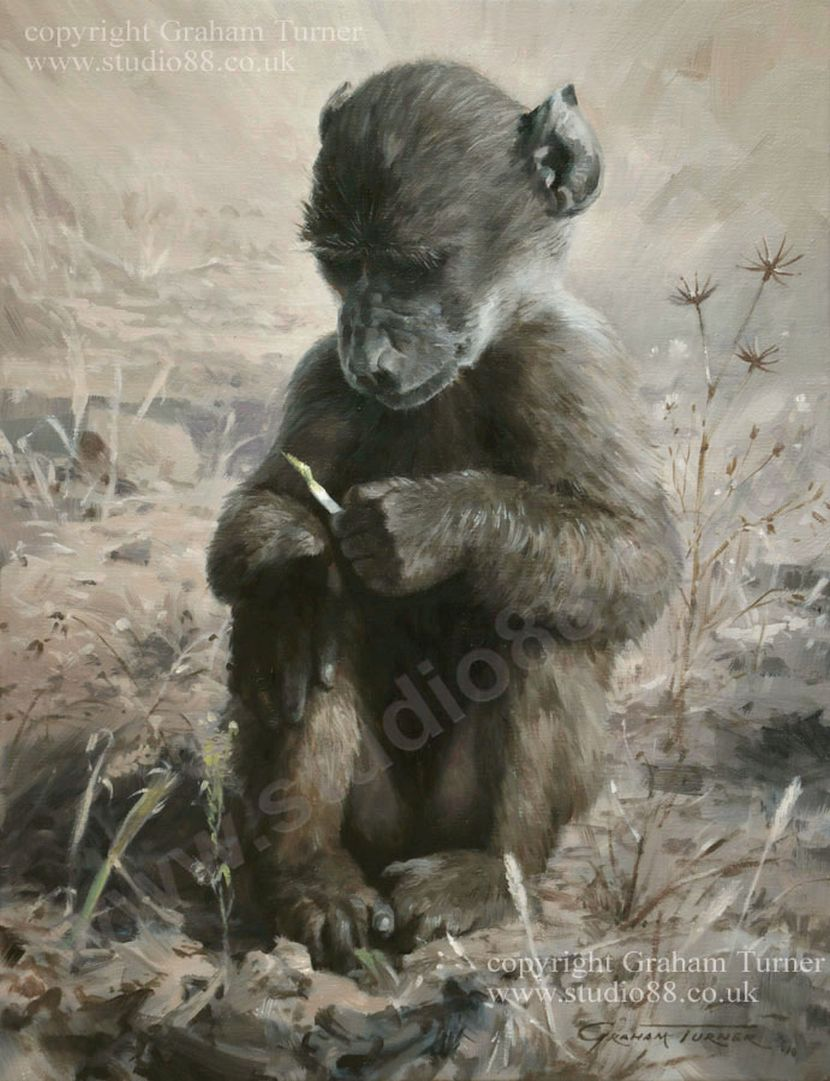 painting of a baby baboon