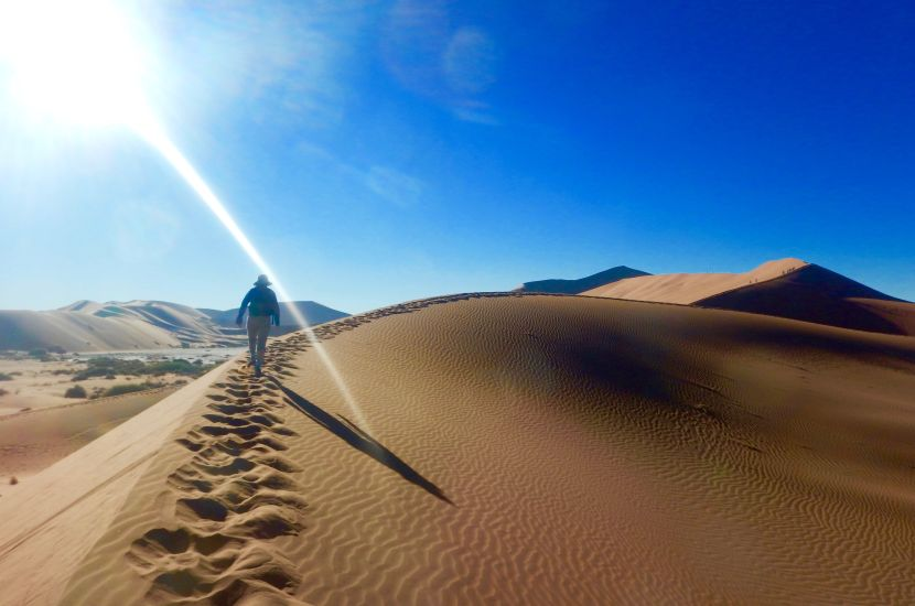 Climbing Big Daddy - Six Day Dunes and Wildlife Experience