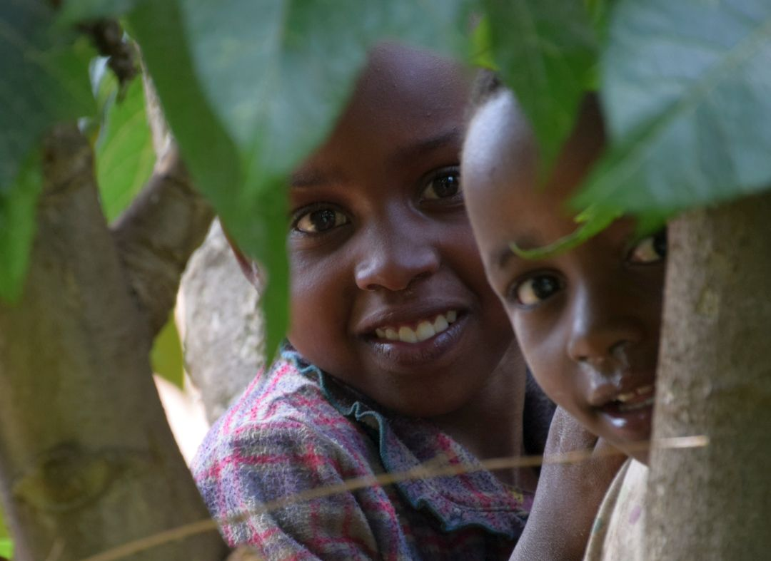 School Children In Uganda On The Great Gorilla Project