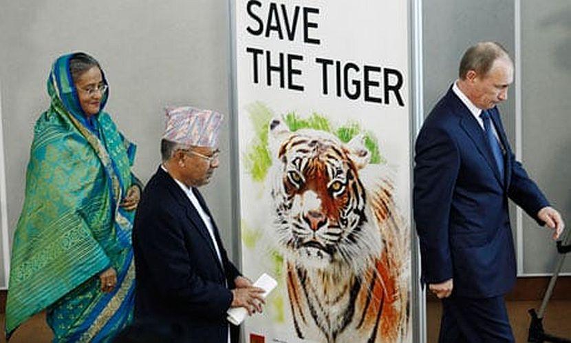 2010 Tiger Summit