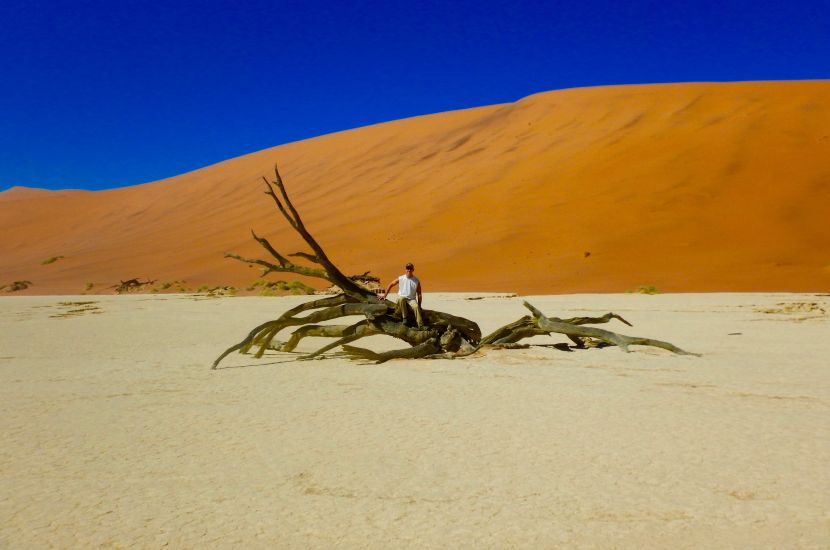 Deadvlei - Six Day Dunes and Wildlife Experience