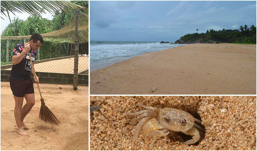 Beach Cleanup in Sri Lanka The Great Turtle Project