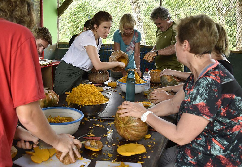 Pumpkin Carving at the Samboja Lestari Orangutan Project